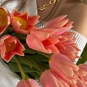 Александра Бонсюкова on My World.