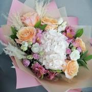 Анна Чинилова (Акимова) on My World.