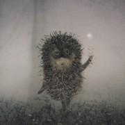 Ольга ....... 42 года on My World.