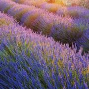 Валерий Новичков on My World.